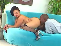 Chubby brunette screwed by blackie great bbw